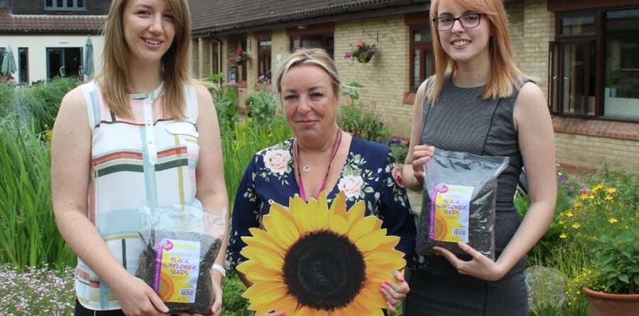 Local business supports St. Elizabeth Sunflower Memories remembrance event