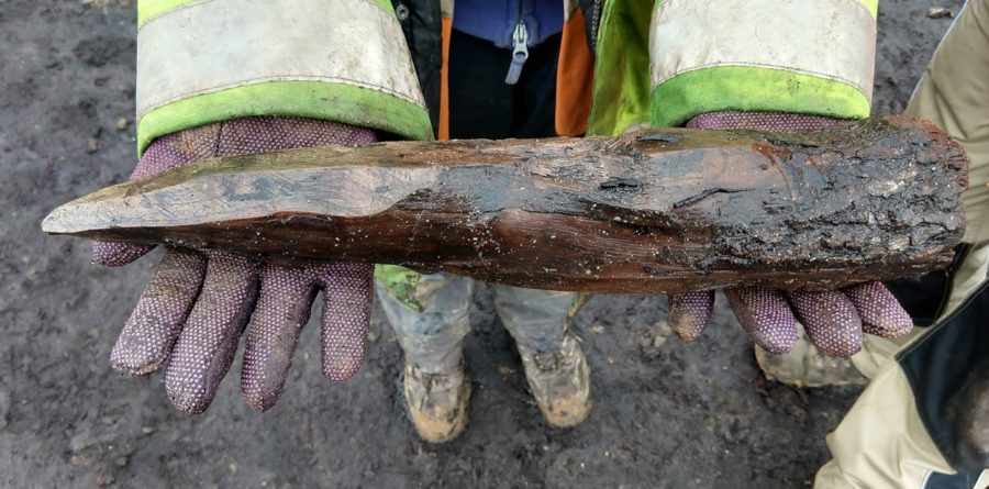Rare Neolithic Trackway uncovered in Woodbridge thanks to Offshore Windfarm work