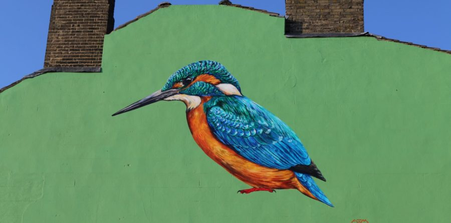ABP teams up with Suffolk Wildlife Trust to create stunning local mural